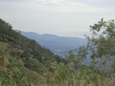 Incursão à Serra do Mar