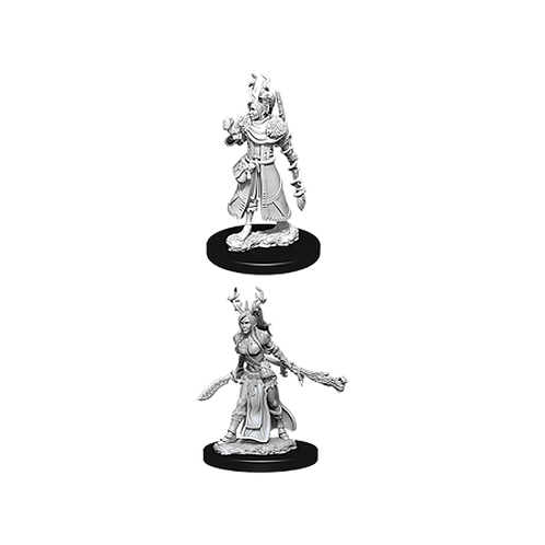 D&D Nolzur's Marvelous Miniatures - Female Human Druid