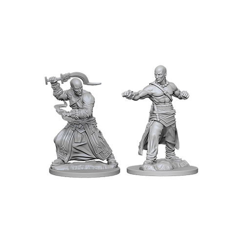 Pathfinder Deep Cuts Unpainted Miniatures - Human Male Monk