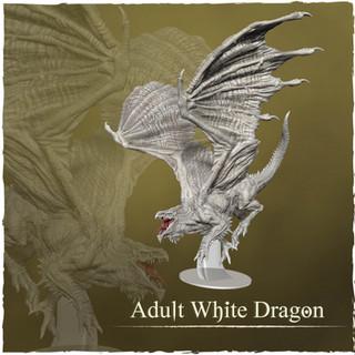 9 - adult white dragon.jpg