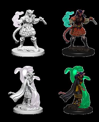 D&D Nolzur's Marvelous Miniatures - Tiefling Female Sorcerer