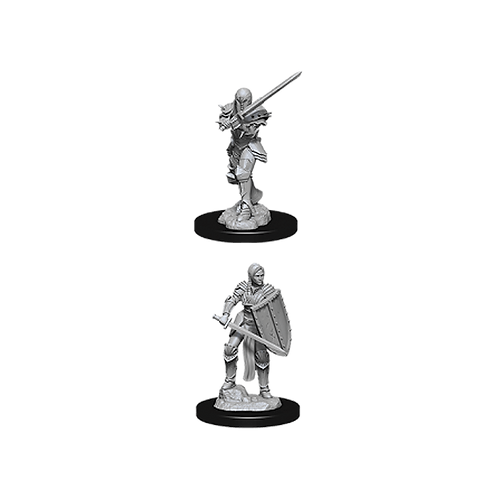 D&D Nolzur's Marvelous Miniatures - Female Human Fighter