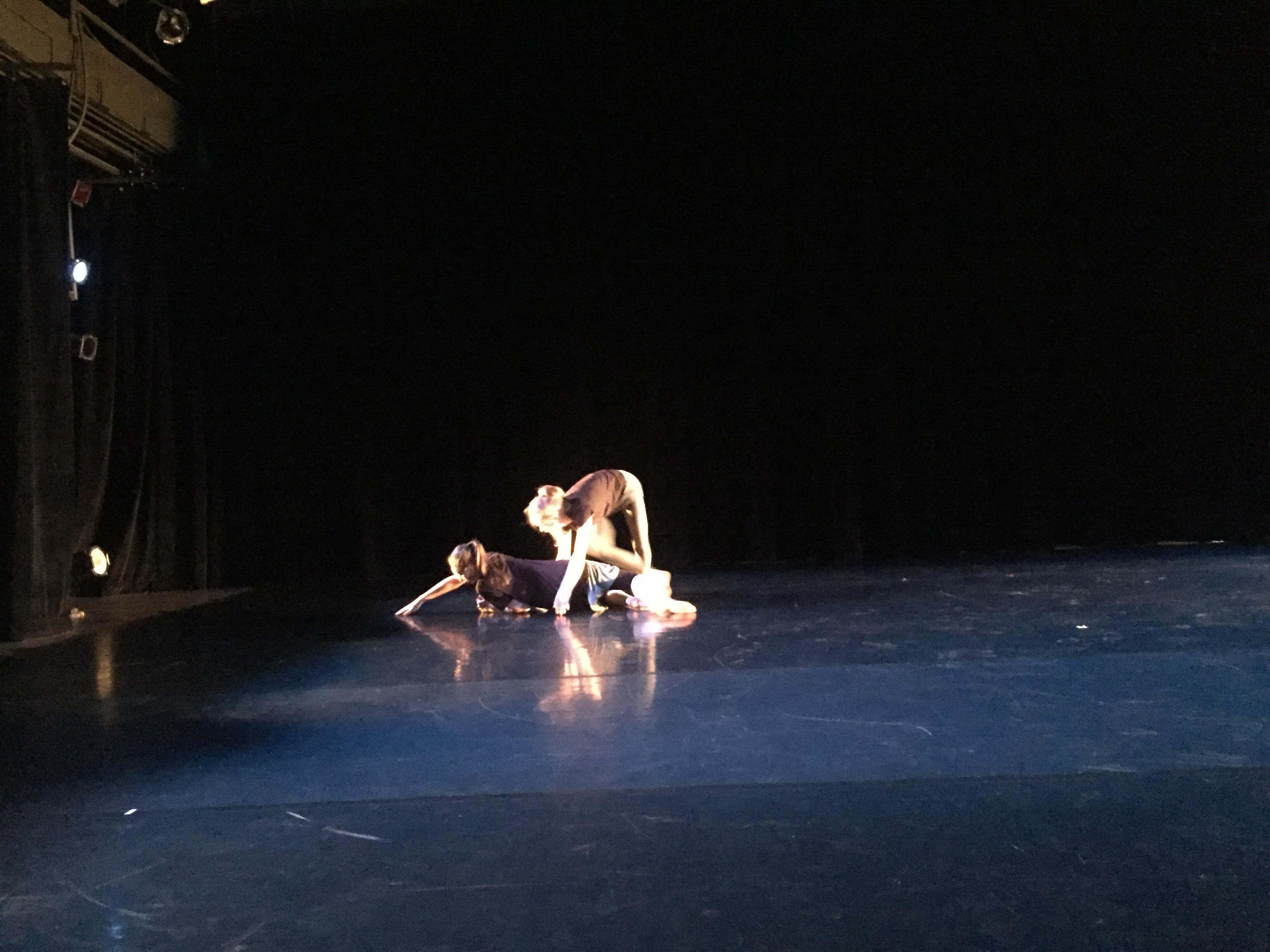Radfest Performance
