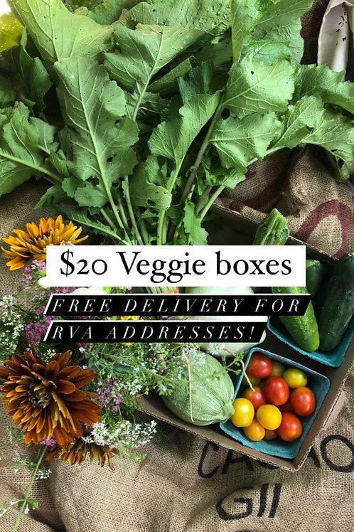 Single Veggie Box