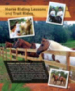 2019 Packet p 19 Horses Equestrian.jpg