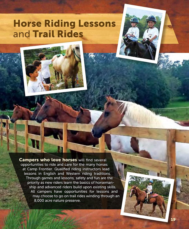 2019 Packet p 19 Horses Equestrian