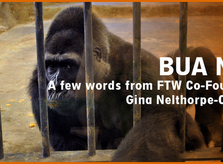 Letter from FTW Co-Founder, Gina Nelthorpe-Cowne