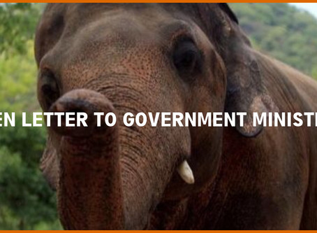 Open Letter to the Ministers
