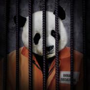 Free The Wild - Panda