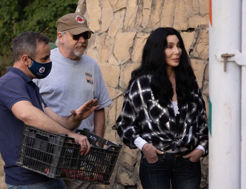 Cher and Mark