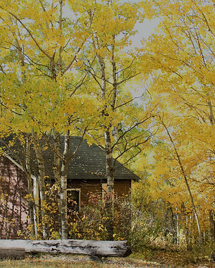 Fall Family Camp Background.jpg