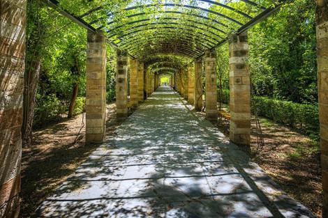 национальный сад.jpeg