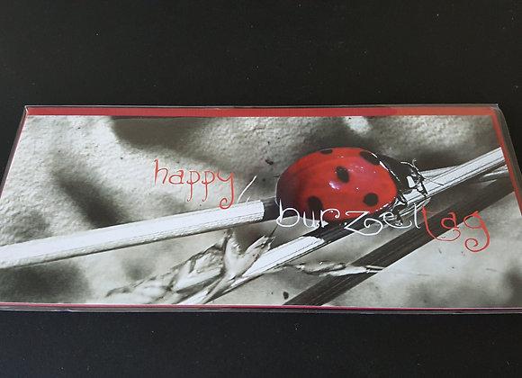 Falt-Postkarten m. Kuvert