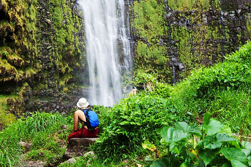 On-the-road to Hana