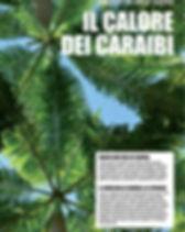 COVER FLORIDA.jpg