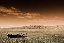 CA - Mojave Desert