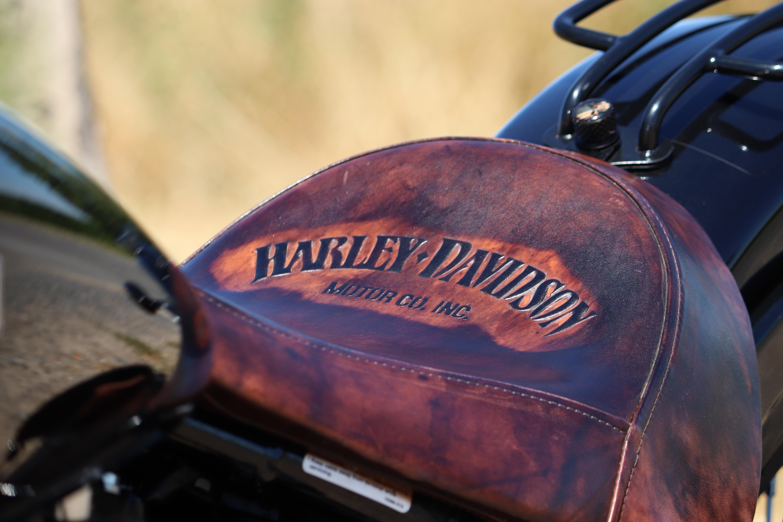 harley-3927381