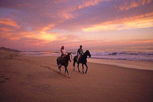 Passeggiata a cavallo sulla spiaggia
