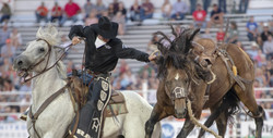 rodeo-3612844