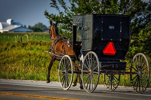 Pomeriggio tra gli Amish