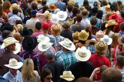 CANADA - BC - Calgary cowboys hats
