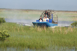 FL - Airboat