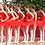 Thumbnail: Tutu plateau rouge