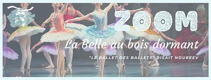 """Fiche ZOOM sur le ballet """"La Belle au bois dormant"""""""