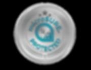 MicroSURE PROTECTED Logo-FINAL1-01.png