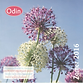 Odin Magazine Jong BD-bedrijf Fruitweeld