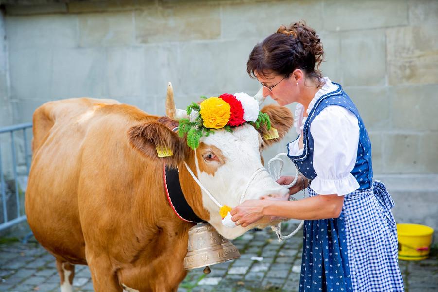 L'association élévage La Côte a amené quatre vaches au Parlement Vaudoise pour faire une surprise au nouveau président du Grand Conseil. Marylin Rohrbach, propriétaire des animaux