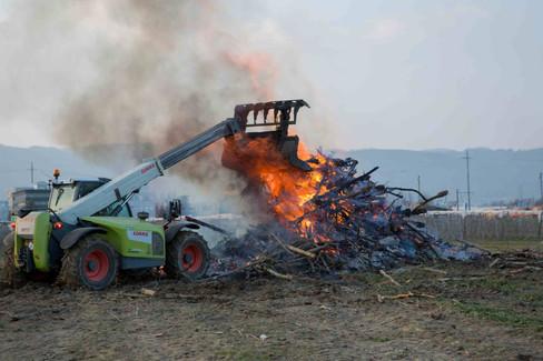 Burning piles of Wood in Nyon