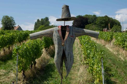 Denens's scarecrow celebration