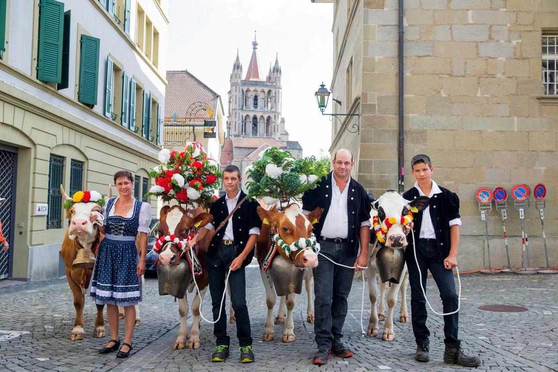 L'association élévage La Côte a amené quatre vaches au Parlement Vaudoise pour faire une surprise au nouveau président du Grand Conseil. La famille Rohrbach pose avec les vache devant la Cathédrale