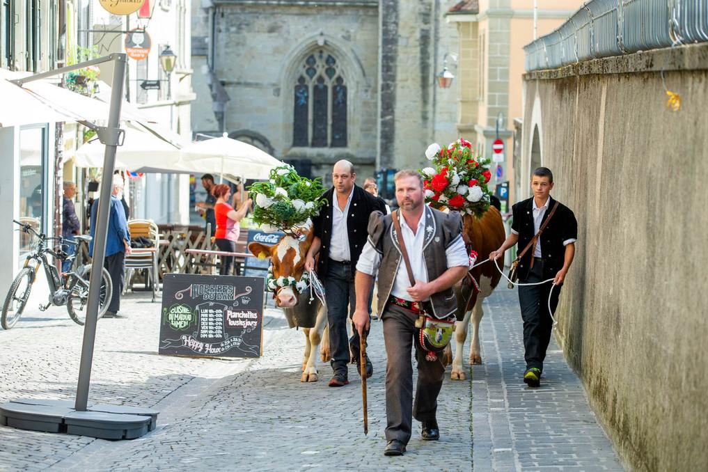 L'association élévage La Côte a amené quatre vaches au Parlement Vaudoise pour faire une surprise au nouveau président du Grand Conseil. Cortège