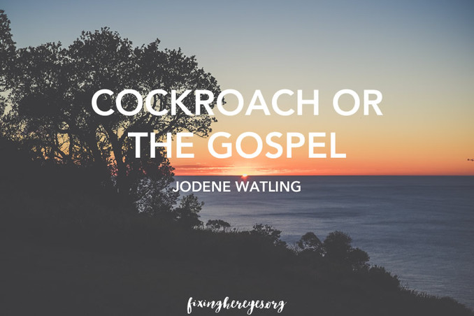 Cockroach or the gospel?