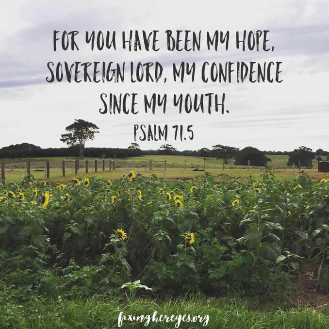 Daily Reflection: Psalm 71.5