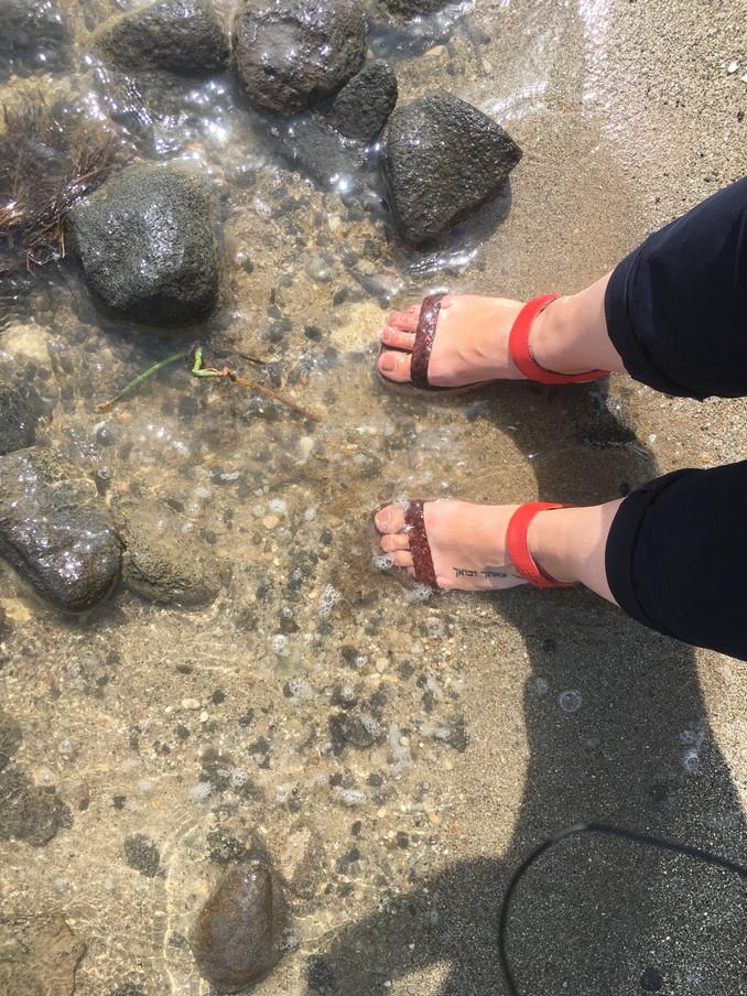 Walking in Jesus' footsteps - Shore of Sea of Galilee