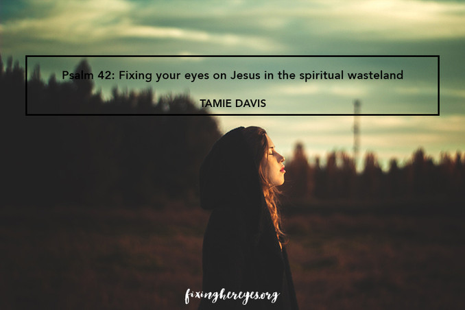 Psalm 42: Fixing your eyes on Jesus in the spiritual wasteland