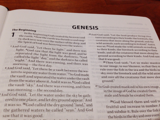 Genesis 1 - a few introductory thoughts