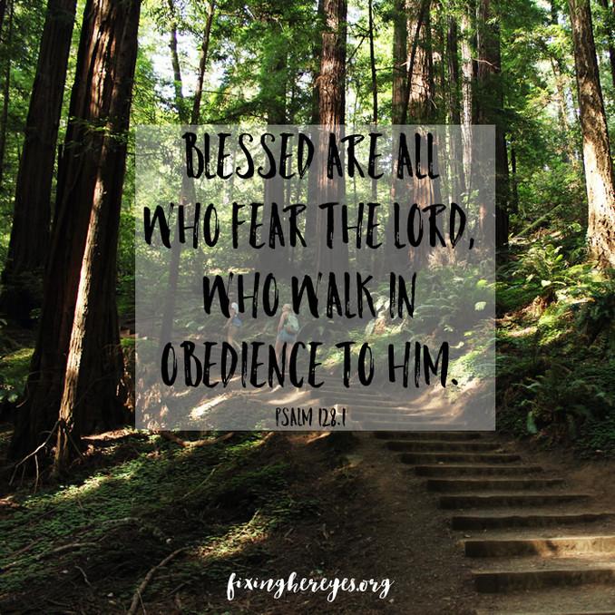Daily Reflection: Psalm 128.1
