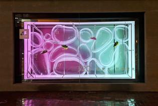 Window Display 展櫃訂制