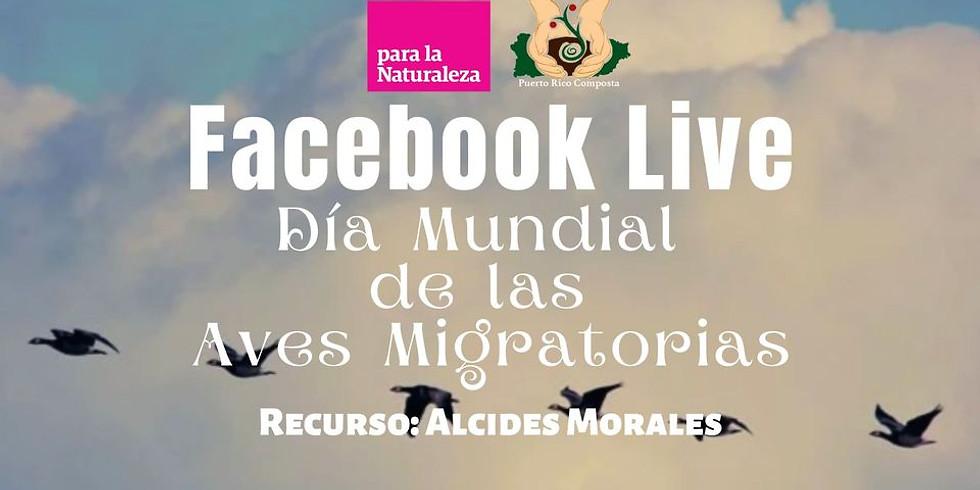 Facebook Live: Día Mundial de las Aves Migratorias (1)