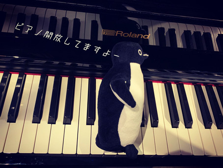 ピアノ弾きに来てください