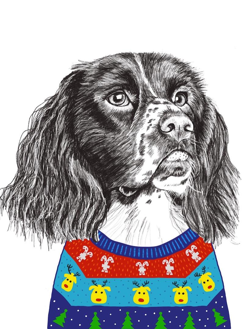 Xmas Dog in Knitwear 1