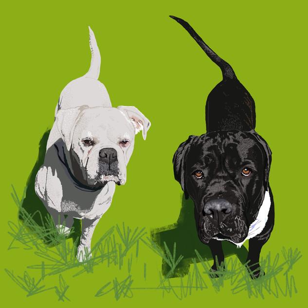 Bruce & Oscar