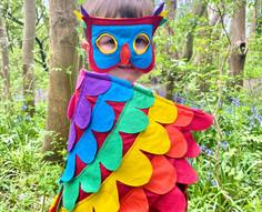 Rainbow Bird Costume