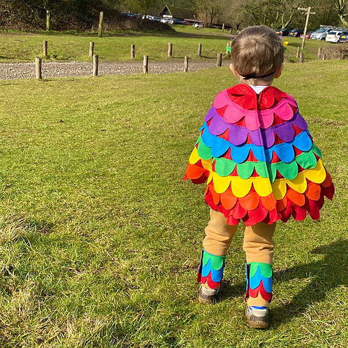 Rainbow Bird Wings, Carnival Bird Costume, Colour Bird Dress Up Costume