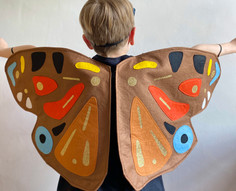Butterfly Costume, Wings and Mask