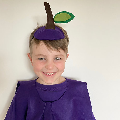 Any Size Plum Costume, Fruit Costume Tabard and Headpiece